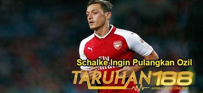 Schalke Ingin Pulangkan Ozil